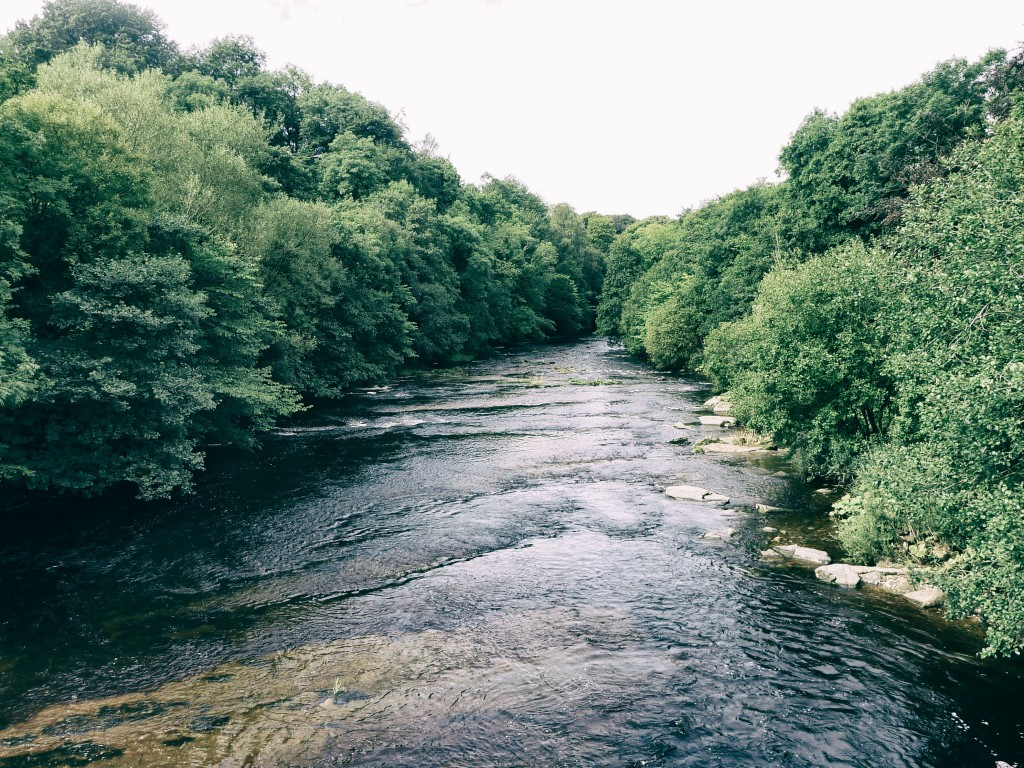 The River Greta